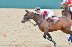 What Is Equestrian Polo - Player going for the ball