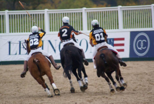 A Polo Pony needs to be brave at high speed
