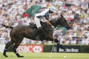 Adolfo Cambiaso - Polo Player in action