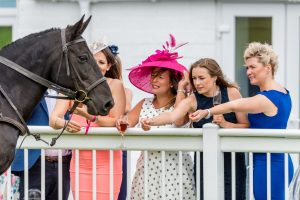 ladies day 2019 - Ladies meeting the horses