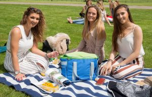Polo in the park 2019 - ladies having a picnic