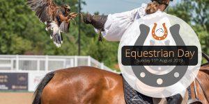 Summer Holiday Ideas Equestrian Day
