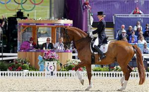 Dressage horse in action with judges